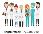 medical  paramedic set vector... | Shutterstock .eps vector #733383940