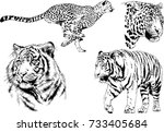 set of vector drawings on the... | Shutterstock .eps vector #733405684