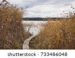 Stock photo autumn landscape with footbridge on the lake with closeup of colorful reeds growing in water and on 733486048
