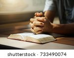 bible women reading from the... | Shutterstock . vector #733490074