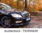chisinau  moldova  october 11 ... | Shutterstock . vector #733504630