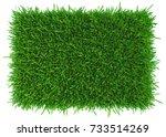 grass background texture. fresh ... | Shutterstock . vector #733514269