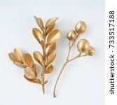 Golden Leaf And Fruit Design...