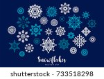 vector set of snowflakes....