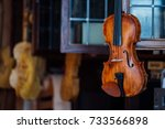 closeup view of beautiful brown ... | Shutterstock . vector #733566898