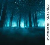 spooky forest concept   3d... | Shutterstock . vector #733567030