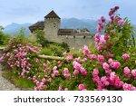 gutenberg castle in vaduz ... | Shutterstock . vector #733569130