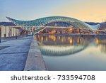 tbilisi  georgia   march 5 ... | Shutterstock . vector #733594708