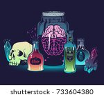witchcrafting set of bottles... | Shutterstock .eps vector #733604380