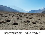 mountain stony plateau with... | Shutterstock . vector #733679374