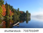 autumn forest reflected in... | Shutterstock . vector #733701049