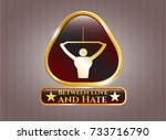 gold shiny badge with lat pull ... | Shutterstock .eps vector #733716790