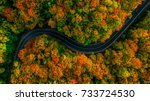 aerial view of thick forest in... | Shutterstock . vector #733724530