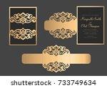 laser cut belly band template.... | Shutterstock .eps vector #733749634