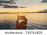 personal perspective glass of... | Shutterstock . vector #733761820