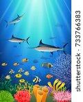 blue marlin fish swimming under ... | Shutterstock . vector #733766383