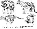 set of vector drawings on the... | Shutterstock .eps vector #733782328