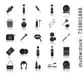 cosmetics accessories drop... | Shutterstock . vector #733801888