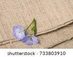 flax   linen flower on a linen... | Shutterstock . vector #733803910
