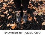woman legs in black shoes...   Shutterstock . vector #733807390