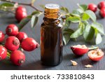 a bottle of rose hip seed oil... | Shutterstock . vector #733810843