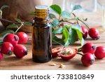 a bottle of rose hip seed oil... | Shutterstock . vector #733810849