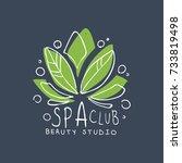 Spa Club  Healthy Studio Logo...