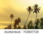 palm trees at sunset  vintage... | Shutterstock . vector #733837720