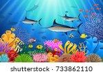 blue marlin fish swimming under ... | Shutterstock . vector #733862110