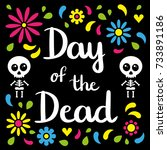 day of the dead handwriting... | Shutterstock .eps vector #733891186