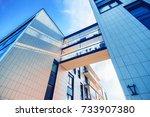 vilnius  lithuania   june 6 ...   Shutterstock . vector #733907380