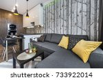 modern interior design small... | Shutterstock . vector #733922014