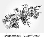 birds on branch | Shutterstock .eps vector #733940950