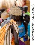orango isl.  guinea bissau  ... | Shutterstock . vector #733954528