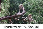 monkeys sitting on the tree... | Shutterstock . vector #733956280