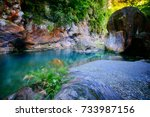 autumn scenery of sakadang... | Shutterstock . vector #733987156