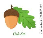 acorn  leaf  oak nut  seed.... | Shutterstock .eps vector #734021320