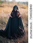 a girl in a black dress  a... | Shutterstock . vector #734032840