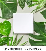 Various Tropical Leaves And...