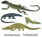 reptile and amphibian colorful... | Shutterstock .eps vector #734066320