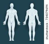 muscles in the body  vector... | Shutterstock .eps vector #734079694