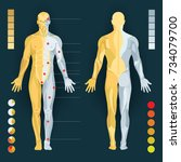 muscles in the body  vector... | Shutterstock .eps vector #734079700