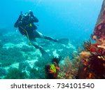 diving camera man  underwater... | Shutterstock . vector #734101540