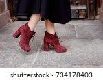 retro styled portrait. teacher... | Shutterstock . vector #734178403