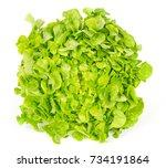 green oak leaf lettuce front... | Shutterstock . vector #734191864