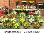 flowers in cemetery  decoration | Shutterstock . vector #734264530