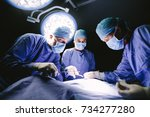 medical team performing surgery ... | Shutterstock . vector #734277280