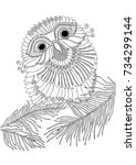 little owl. hand drawn picture. ... | Shutterstock .eps vector #734299144