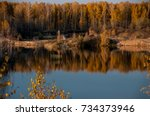 pond on the background of... | Shutterstock . vector #734373946