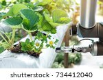 agriculture technology  ... | Shutterstock . vector #734412040